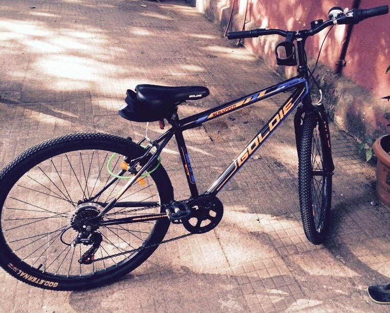My lean mean Goldie bike
